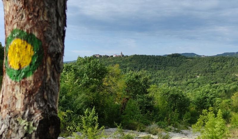 Predstavljena nova pješačka staza na području Turističke zajednice središnje Istre-120892