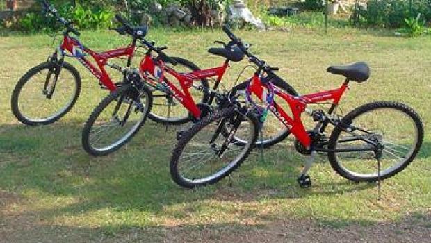 Ukradena četiri bicikla-98625